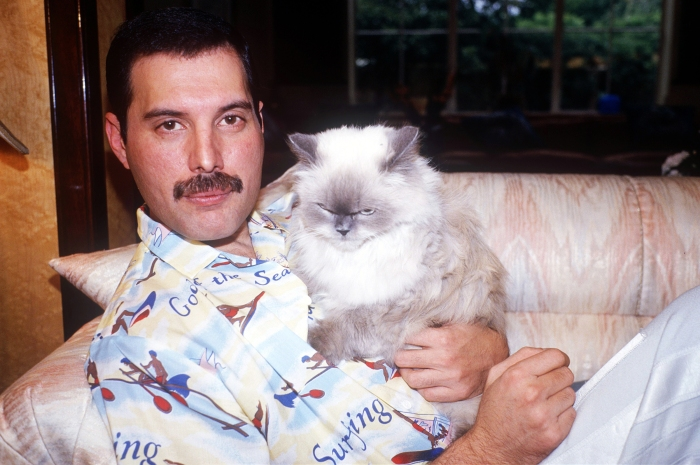 freddie-with-cat-1985-1986