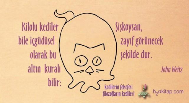 Kedilerin_Felsefesi_Webb_AFORİZMALAR_minnos_K-640x350
