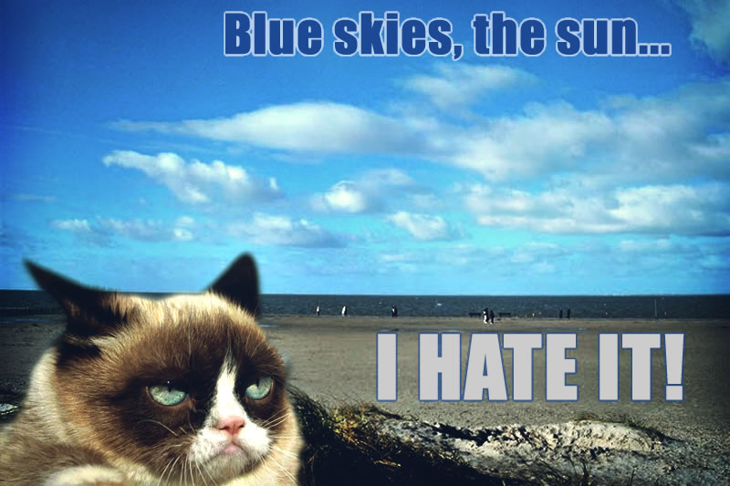 grumpy_cat_loves_the_sun____not__by_cthulhu1976-d5wxgez