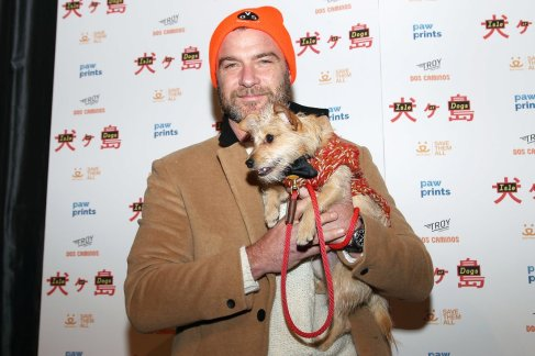 """- New York, NY - 3/21/18 - Paw Prints Presents a Special Screening of """"ISLE OF DOGS"""". -Pictured: Liev Schreiber -Photo by: Kristina Bumphrey/StarPix -Location: IFC Center"""